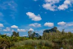 Красивый сценарный ландшафт известняка в Krabi, Таиланде стоковое изображение