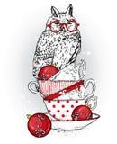 Красивый сыч сидит на винтажных чашках Vector иллюстрация для открытки или плаката ` S Нового Года и рождество зима снежка положе иллюстрация вектора