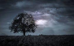 Красивый темный ландшафт Стоковая Фотография RF