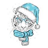 Красивый тигр в крышке и шарфе ` s Нового Года Vector иллюстрация для открытки или плаката claus santa Стоковая Фотография RF
