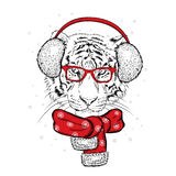 Красивый тигр в наушниках зимы и шарфе Vector иллюстрация для открытки или плаката claus santa Стоковое фото RF