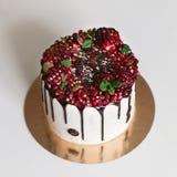 Красивый торт с гранатовым деревом и мятой Стоковые Фотографии RF