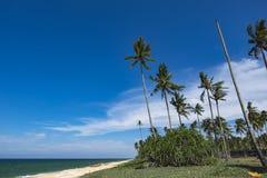 Красивый тропический вид на море под ярким солнечным днем, песчаным пляжем, шлюпкой, кокосовой пальмой и голубым небом Стоковые Фотографии RF