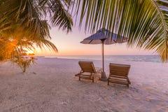 Красивый тропический заход солнца ландшафта пляжа Белая концепция предпосылки панорамы ладоней песка и кокосов широкая Изумительн стоковое изображение