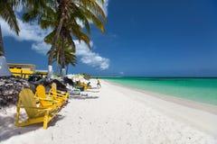Красивый тропический пляж на Вест-Инди Стоковые Фото