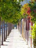Красивый тротуар Стоковые Изображения RF