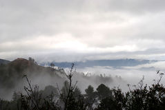 Красивый туман утра, на angkhang doi в Chiangmai, Таиланд стоковая фотография rf