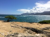 Красивый уединённый скалистый пляж на Гаваи Стоковое Изображение RF