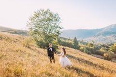 Красивый усмехаясь жених и невеста идя около зеленого дерева на луге с предпосылкой горы Стоковые Фотографии RF