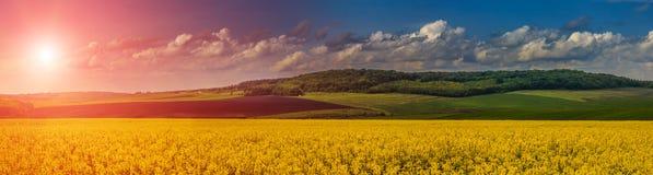 Красивый, фантастический ландшафт Заход солнца и идилличный ландшафт страны с полем желтого рапса Стоковые Изображения RF