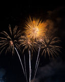 Красивый фейерверк на небе на ноче Стоковые Фотографии RF