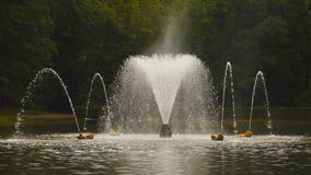 Красивый фонтан в пруде сток-видео