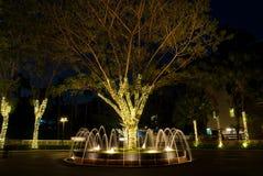 Красивый фонтан с украшенным светом на nighttime Стоковое Изображение