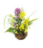Красивый цветок в изолированной вазе стоковое фото