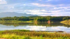 красивый цветок в озере Стоковые Фото