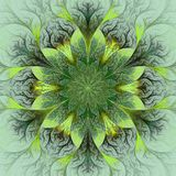 Красивый цветок фрактали в коричневом цвете, зеленом цвете и сером цвете. Стоковая Фотография
