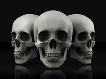 Красивый череп сделанный из текстурированного металла Стоковое фото RF