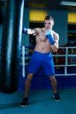 Красивый человек в голубых перчатках бокса тренируя на груше в спортзале Мужской боксер делая разминку Стоковое Изображение