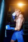 Красивый человек в голубых перчатках бокса тренируя на груше в спортзале Мужской боксер делая разминку Стоковое Изображение RF