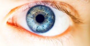 Красивый человеческий глаз, макрос, конец вверх по голубому, желтый, коричневый, зеленый цвет Стоковое Фото