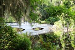Красивый южный мост стоковые фотографии rf