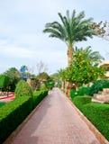 Красивый южный сад Стоковые Фото
