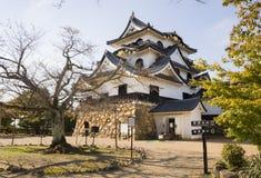 Красивый японский висок Стоковое Изображение