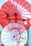Красивый японский зонтик с дизайном цветков Стоковое Фото