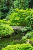 Красивый японский сад Стоковые Фотографии RF