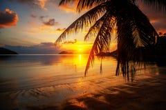 Красивый яркий красочный сногсшибательный заход солнца на тропическом пляже дальше Стоковые Фото