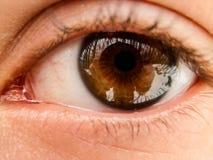 Красивый broen женский глаз с отражением фотографа в лесе зимы Стоковые Изображения RF