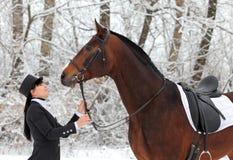 Красивый equestrian в холодном зимнем дне Стоковые Изображения