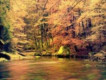 Красивый Fall River выравнивается с утесами песчаника, большими валунами Стоковые Изображения RF