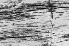Красивый grunge природы и пакостная деревянная предпосылка текстуры Стоковые Фотографии RF