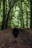 Красивый hiker женщины стоя на следе леса смотря прочь Женщина на походе в лесах природы пугающих мистических Стоковая Фотография RF