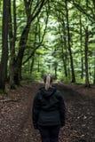 Красивый hiker женщины стоя на следе леса смотря прочь Женщина на походе в лесах природы пугающих мистических Стоковое Фото