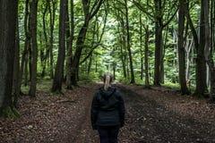 Красивый hiker женщины стоя на следе леса смотря прочь Женщина на походе в лесах природы пугающих мистических Стоковое Изображение