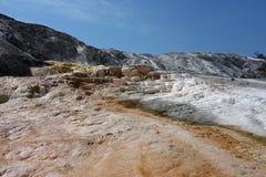 Красивый Mammoth Hot Springs на парке yellowstone Стоковая Фотография