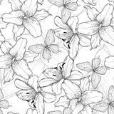 Красивый monochrome, черно-белая безшовная предпосылка с лилиями и бабочки Нарисованные вручную линии контура Стоковые Фотографии RF