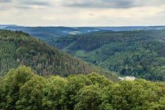 Красивый Saxon Швейцария леса Стоковое Фото