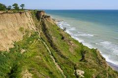 Красивый seascape весны с зеленой травой и деревьями Стоковые Фото