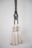 Красивый tassel занавеса Стоковая Фотография RF