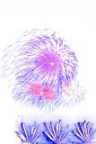 Красивым красочным дисплей изолированный фейерверком для протокола доступа к хост-машине торжества Стоковые Изображения RF