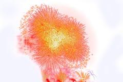 Красивым красочным дисплей изолированный фейерверком для протокола доступа к хост-машине торжества Стоковые Фото