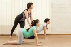 2 красивых беременной женщины делая йогу с тренером Стоковая Фотография RF