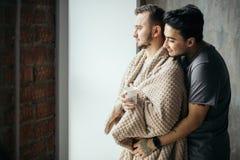 2 красивых гомосексуальных парня пока стоящ около окна стоковое изображение rf