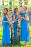 3 красивых девушки в голубых платьях в парке Стоковое Изображение RF