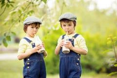 2 красивых дети, брать мальчика, ел клубники и co Стоковое Изображение RF