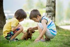 2 красивых дети дошкольного возраста, братья мальчика, играя с освещенный Стоковое Изображение RF