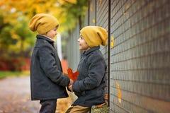 2 красивых дет, братья, держа руки и говоря в t Стоковые Изображения RF